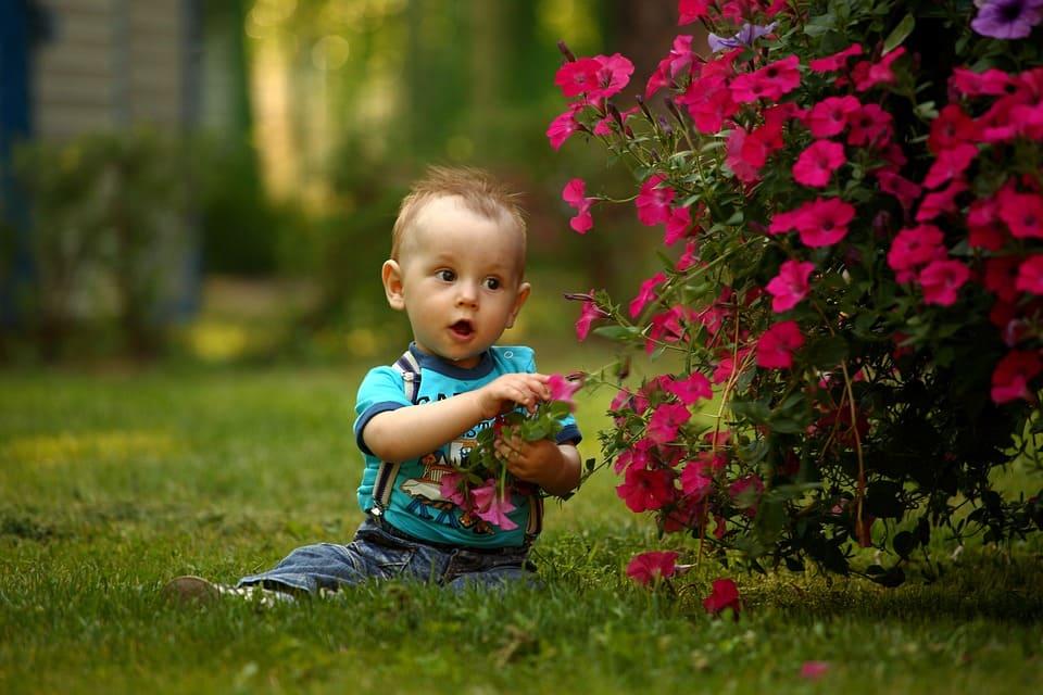 Baby i trädgården