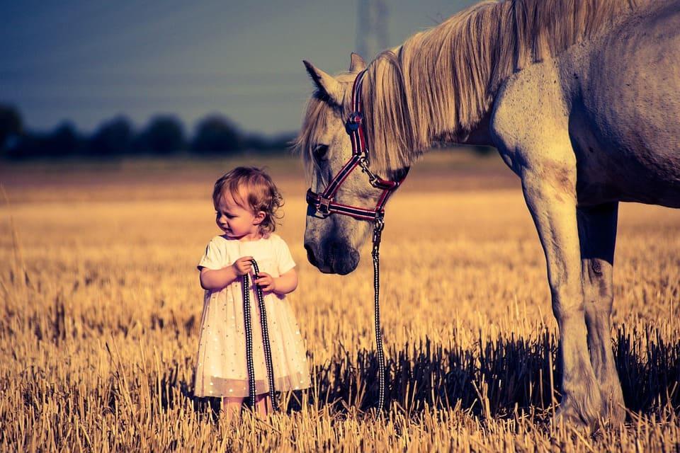 Baby med häst