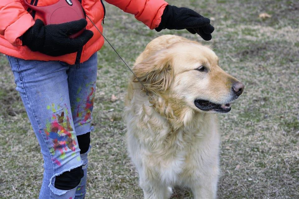 Flicka klappar hund