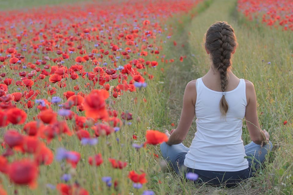 Meditation i vallmofält