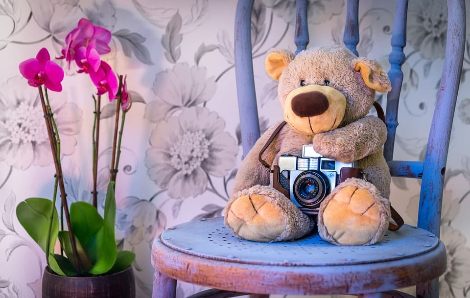 Nallebjörn tar foto