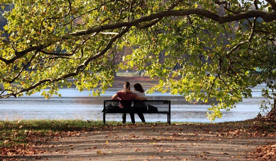 Par i parken